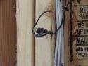 Garage_Door_Sensor_Wiring_DSC05646.JPG