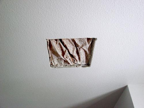 Ceiling Fan Light Wiring Instructions